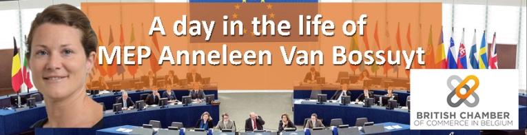 Anneleen Van Bossuyt MEP banner